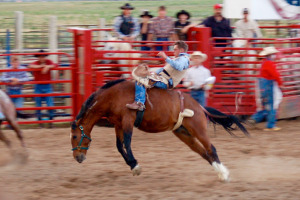 Bryce Canyon Rodeo | Rondreis Zuidwest Amerika